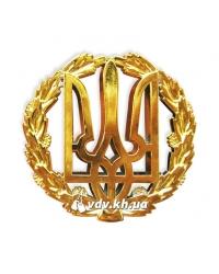 Беретный знак рядовых и сержантов. Золото